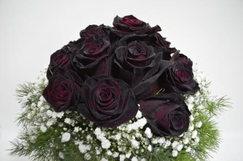 plant-flower-petal-rose-pink-magenta-761411-pxhere.com.jpg