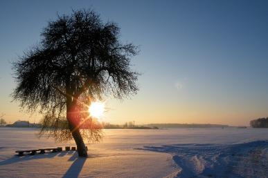 sunrise-1738930_1920.jpg